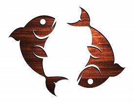 foto of zodiac sign  - Zodiac Symbols and signs - JPG